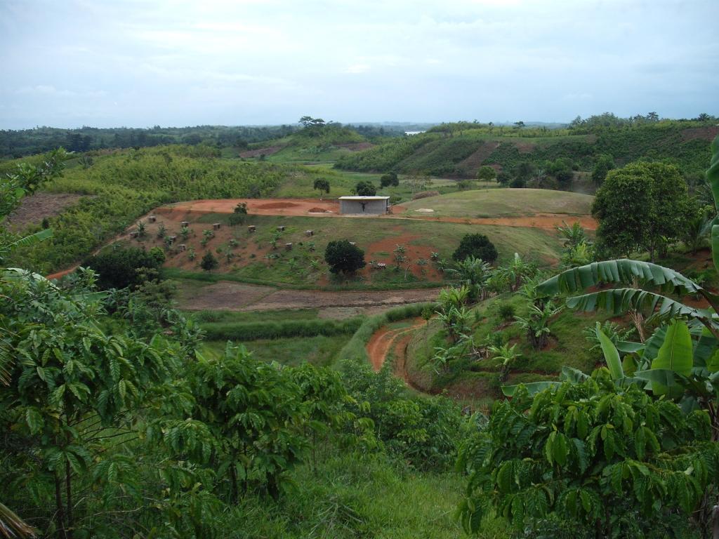 Il verde delle colline malgascie